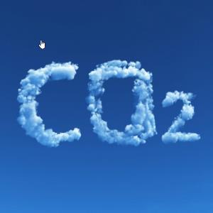 anh-huong-cua-khi-CO2-trong-cach-bao-quan-rau-cu-qua