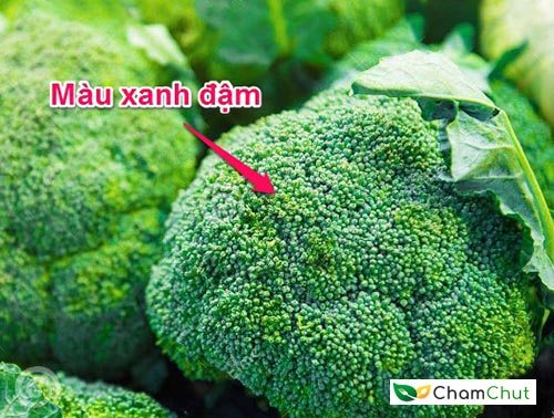 chon-bong-cai-co-mau-xanh-dam-beta-carotene