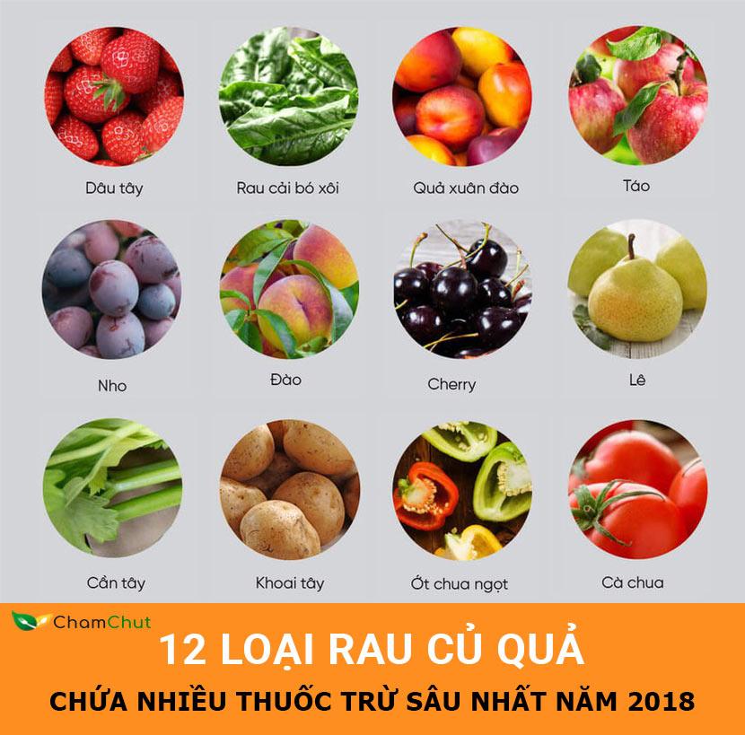 12-loai-rau-cu-chua-nhieu-thuoc-tru-sau-nhat-CHAMCHUT.COM