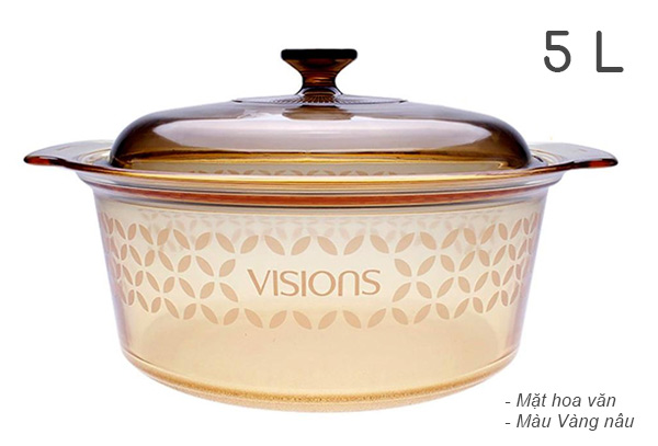 Danh-gia-Noi-thuy-tinh-hoa-van-cao-cap-Visions-5L-VSD-5-FV