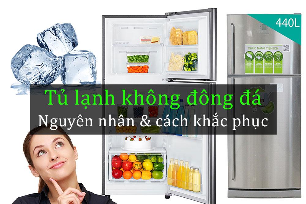 Tu-lanh-khong-dong-da