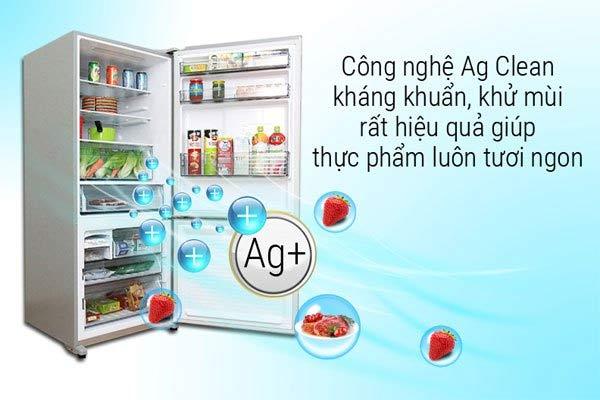 Tủ lạnh Panasonic có tốt không? Công nghệ kháng khuẩn Ag Clean
